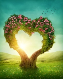 29685136 - heart shaped tree in the meadow