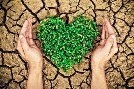 heart in ground