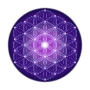 Bright Flower of Life With Stars On White